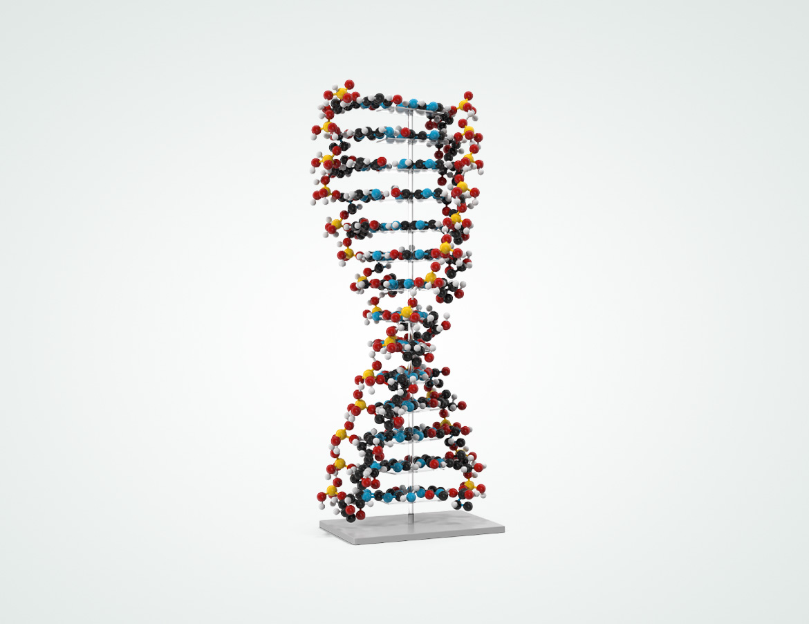 DNA Genetic Testing and Analytics